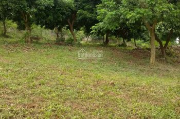 Cần bán nhanh lô đất 2355m2 đã có tường bao xung quanh giá rẻ tại xã Nhuận Trạch, Lương Sơn, HB
