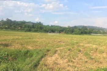 Cần bán 3036 m2 đất thổ cư trang trại tại Hoà Sơn, Lương Sơn, Hoà Bình