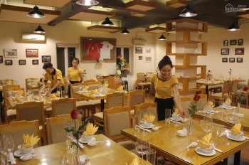 Cho thuê nhà mặt phố Trần Bình Trọng - Nguyễn Du: Diện tích 50m2 x 6 tầng, mặt tiền 6.5m, KD tốt