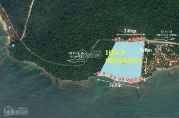 Chính chủ bán 9.84ha đất Cửa Cạn có 365m mặt biển, không có miếng thứ 2, giá cho nhà đầu tư