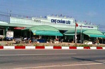 Bán đất Chánh Phú Hòa, Bến Cát, Bình Dương, gần chợ Chánh Lưu, giá 480tr thổ cư 100%