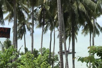 Bán đất vị trí đắc địa 3270m2 ở Hòn Sơn thích hợp xây Villa Biệt thự