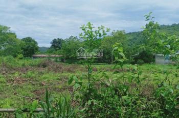 Bán 2500m2 đất Lương Sơn HB giá cực rẻ view thoáng, múc được ao tuyệt đẹp, mặt đường dài có 1 0 2