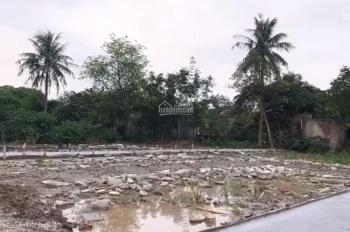 Chính chủ bán lô đất vàng ngay đại lộ Bùi Viện (An Dương)