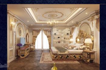 Bán biệt thự (lâu đài siêu vip) tại khu đô thị Cầu Bươu, 0948983868