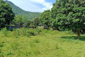 Bán gấp 7300m đất thổ bằng phẳng, vuông vắn giá rẻ tại Lương Sơn, Hòa Bình.