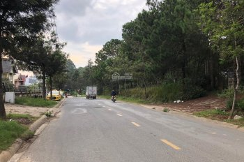 Bán đất thổ cư mặt tiền Mai Anh Đào, P8, Đà Lạt, đối diện Thung Lũng Tình Yêu