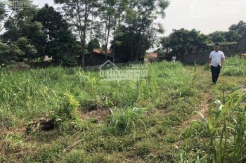 Chính chủ bán trang trại 1535 m2 tại Tân Dân, Sóc Sơn. Giá 6 triệu/m² có thương lượng, 0392710258