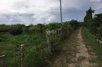 Bán đất nghỉ dưỡng diện tích 4200m2, view đẹp TP Bảo Lộc