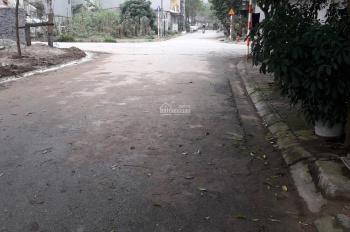 Bán đất dịch vụ Tân Tây Đô, Đan Phượng, Hà Nội diện tích 54m2