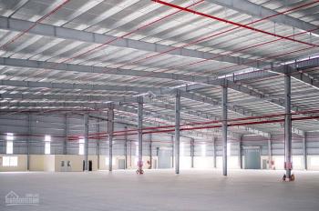 Cho thuê nhà xưởng kho bãi trong các KCN: Bàu Bàng, Mỹ Phước 3, Nhơn Trạch 2, Tân Phú Trung