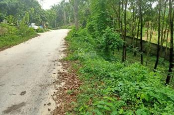 Cần chuyển nhượng lô đất 2068m2 đất làm biệt thự nhà vườn nghỉ dưỡng views hồ tại Cư Yên, LS, HB