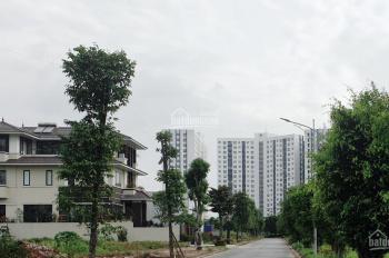 Chính chủ bán đất LK trung tâm Thanh Hà - Mường Thanh - Cienco 5 Hà Nội
