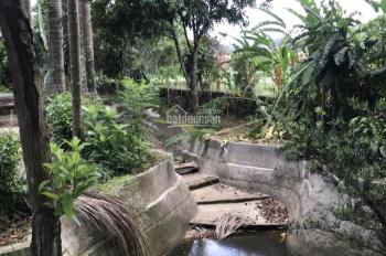 Cần bán đất làm nghỉ dưỡng tại Nhuận Trạch, Lương Sơn