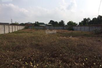 Bán đất xây kho 1.000m2 thổ cư Nguyễn Đình Kiên, Bình Chánh, đường xe container
