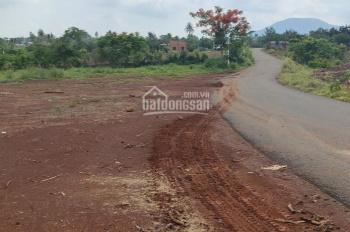 Bán gấp lô đất gần ngã 3 Sông Thao, Hưng Thịnh, Trảng Bom, giá đầu tư