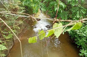Sở hữu ngay lô đất nhỏ nhỏ xinh sổ hồng HN, diện tích 301m2 view suối tuyệt đẹp tại Yên Bình