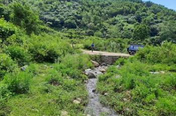 Siêu phẩm 17ha có suối to ở Lương Sơn giá chỉ vài trăm/ha