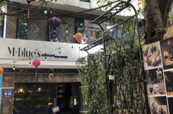Chính chủ bán gấp nhà mặt phố Nguyễn Thái Học ngã 3 Hoàng Diệu, 9 tầng 70m2 rất đẹp, Lh 0936088206