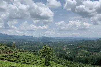 6300m2 đất vườn nghỉ dưỡng Bảo Lộc