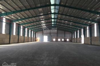 Cho thuê kho xưởng 1200m2, đường Lạc Long Quân, Q11, giá hợp lý, đường xe container, kho cao 6 - 8m