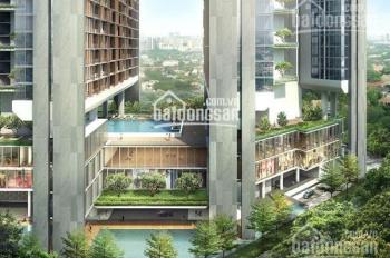 Cho thuê văn phòng cao cấp Dolphin Plaza, 28 Trần Bình, Nam Từ Liêm. Liên hệ 0947 726 556