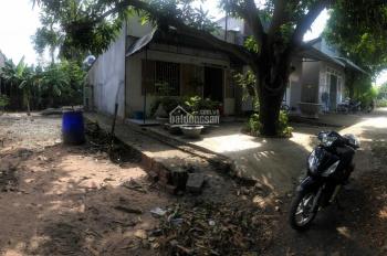 Bán đất sau ủy ban xã Xuân Trường, sổ hồng riêng, full thổ cư, khu dân cư, phù hợp xây nhà ở