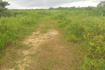 Bán đất nghỉ dưỡng diện tích 5000m2 gần trung tâm TP Bảo Lộc