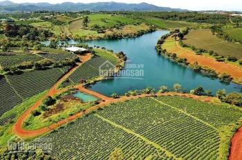 Bán đất nền nghỉ dưỡng view hồ đồi thông đường khúc thừa dụ thành phố Bảo Lộc