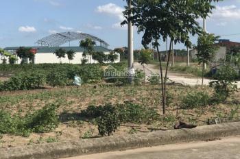 Chính chủ cần bán 81m2 đất dự án Đình Tổ - Bắc Ninh giá 8,5tr/m2, LH 0982174963