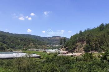 Bán đất chân đèo Prenn - Phường 3 - Đà Lạt