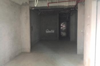 Chính chủ cần bán căn 109,7m2 - hướng cửa Đông Nam - view bể bơi - tầng trung