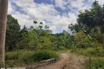 5700m2 đất Lương Sơn - HB vuông góc, phẳng lỳ, có ao, trồng cây ăn quả, đường bê tông vào tận đất