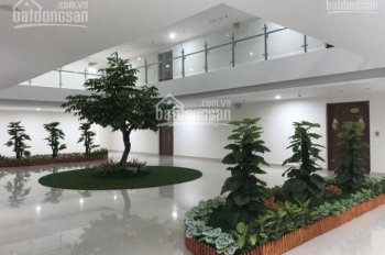 Bán căn hộ CT4 Vimeco, Nguyễn Chánh, 142m2, 3PN, tầng 30 có sân vườn, nội thất cao cấp (xem ảnh)