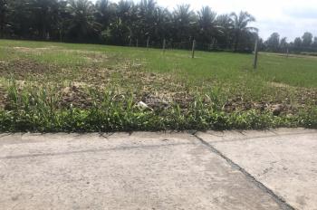 Chính chủ cần bán đất tại Ấp Bình Trung, xã Thạnh Nhựt, Huyện Gò Công Tây, Tiền Giang