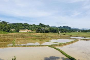 Bán gấp lô đất 2400m2 đất thổ cư giá rẻ tại Lương Sơn, Hoà Bình
