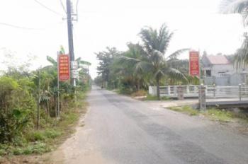 Chính chủ bán nhanh 12 công đất sầu riêng tại Hậu Mỹ Trinh, Cái Bè, giá 230 tr/công. LH 0939651172
