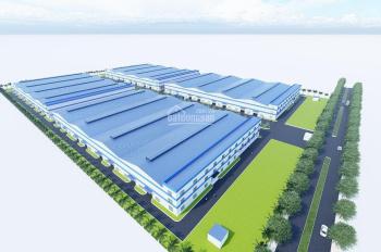 Cần cho thuê 10000m2 xưởng mới Đình Vũ - 0976.806.408