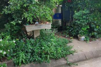 Bán đất phân lô Văn Cú, An Đồng, An Dương. Giá 850tr
