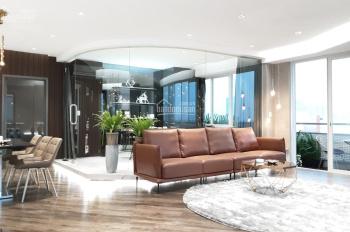 Cần tiền bán gấp căn hộ biệt thự Mỹ Tú cảnh quan, Phú Mỹ Hưng, DT 320m2, 8.5 tỷ, LH: 0946956116