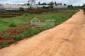 Kẹt vốn bán gấp đất NN đường Trịnh Hoài Đức, Đà Lạt giá 1.3 tỷ