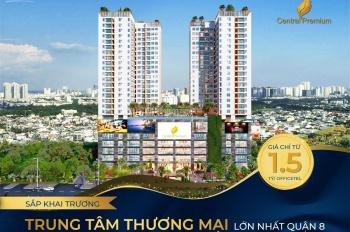 Cho thuê căn hộ tại chung cư Central Premium Q.8 1PN, 2PN, 3PN, Officetel, giá cả hợp lý phải chăng