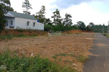 Bán đất thổ cư mặt tiền Triệu Quang Phục, trung tâm TP Bảo Lộc. LH 0379.893.779