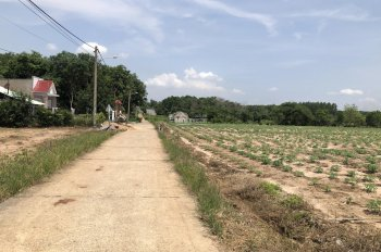 Cần bán 1000m2 đất trên trục đường chính vào sân bay Long Thành, giá 5tr/m2