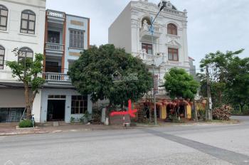 Bán đất thành phố Hưng Yên, trên đường kết nối dự án Vin Hưng Yên 230 ha
