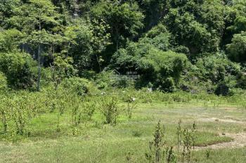 Cần bán 1160m2 có 400m2 thổ cư tựa núi đá view cánh đồng giá 600tr