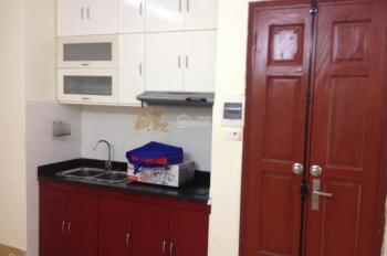 Cho thuê chung cư mini DT 45m2 (02 phòng ngủ - 01 phòng khách)
