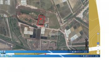 Bán đất Cần Giờ, đường Duyên Hải, xã Long Hòa, 2400m2, giá 7.5 tr/m2