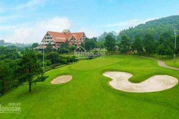 Bán 1 số lô đất nền biệt thự vip tại khu nghỉ dưỡng sân golf Tam Đảo - Vĩnh Phúc giá rẻ vô cùng
