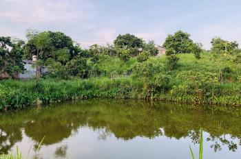 Gia đình cần bán lo đất thổ cư có ao diện tích 2000m2 tại Nhuận Trạch, Lương Sơn, Hòa Bình